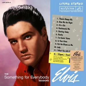 the_something_for_everybody_sessions_vynil_front