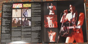 elvis_now_and_again_inside